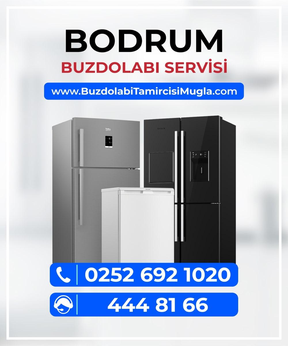 bodrum buzdolabı servisi